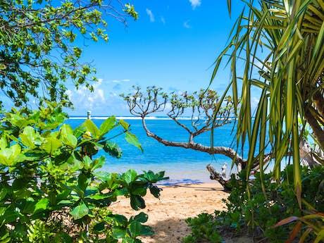 Anini Beach Als Vacation