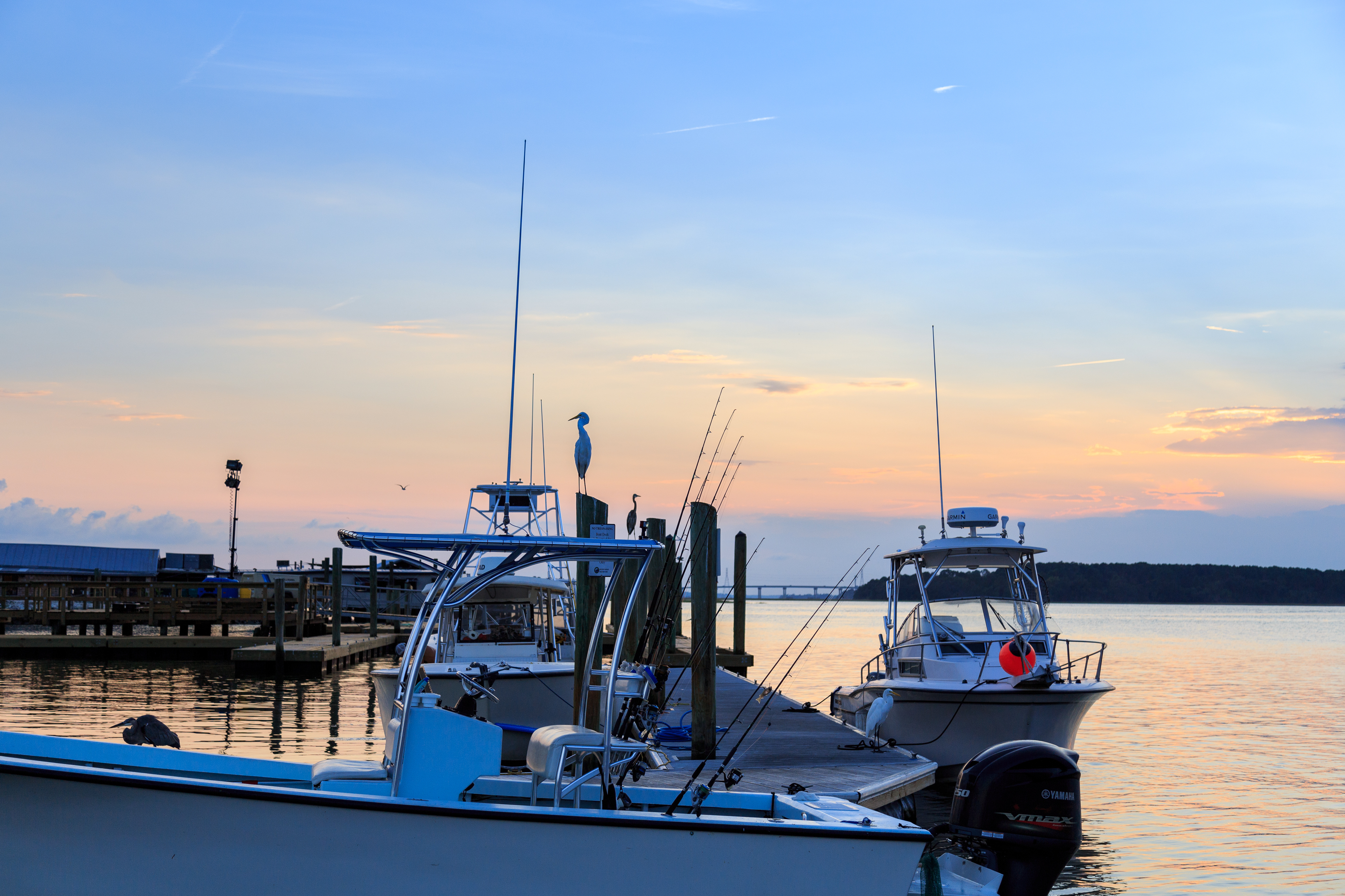 Inland Harbour 2431   Photo 9