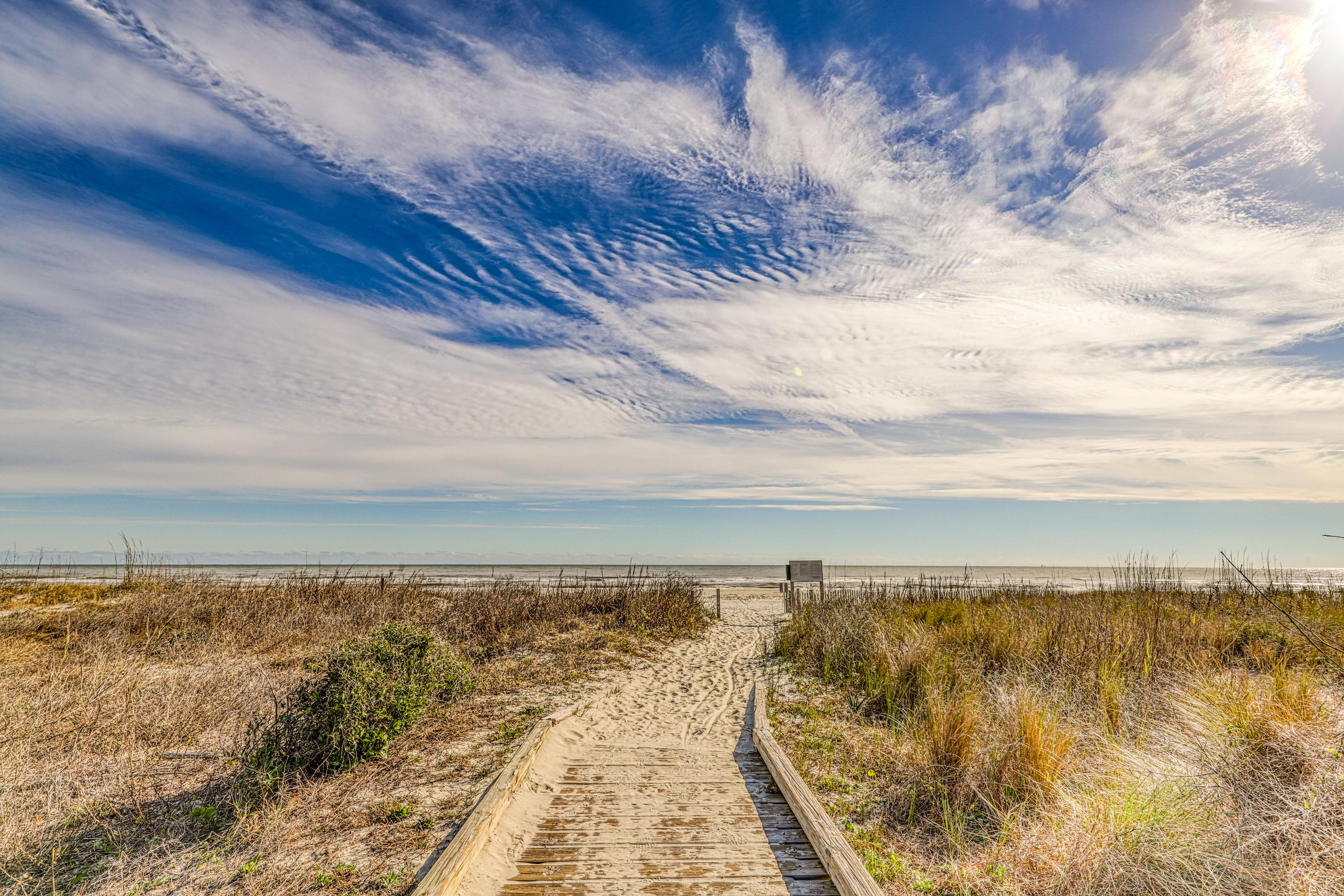 Sandhill Crane 16 | Photo 52