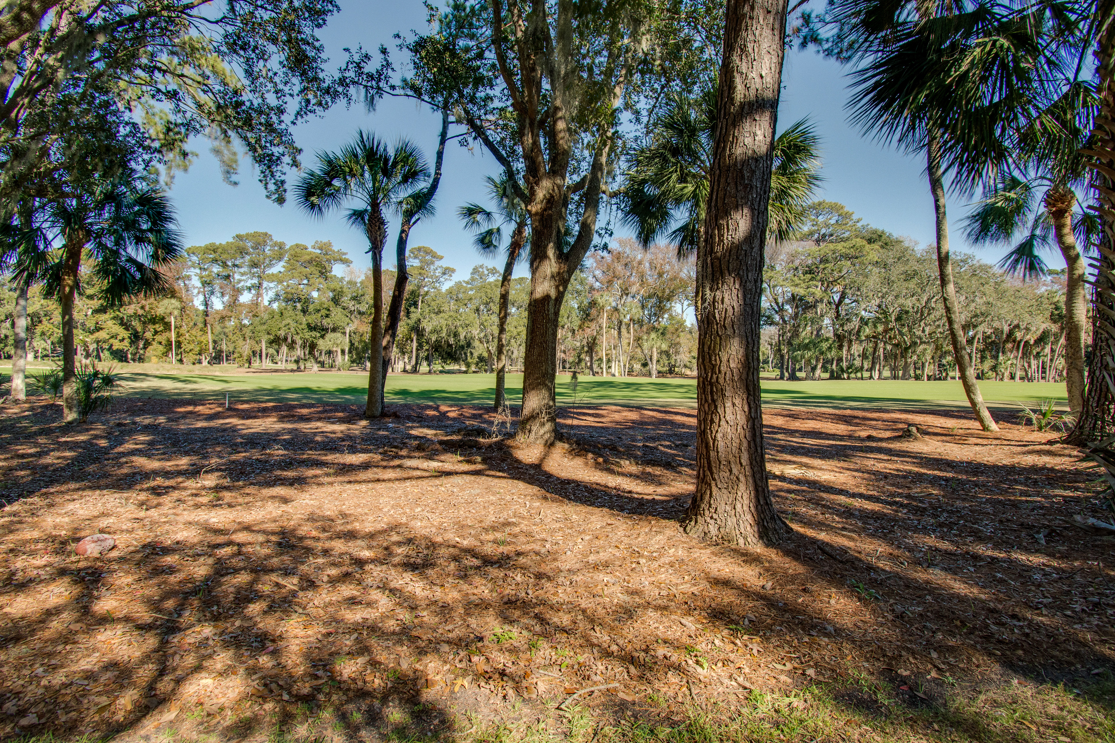 Plantation Club 487 | Photo 26