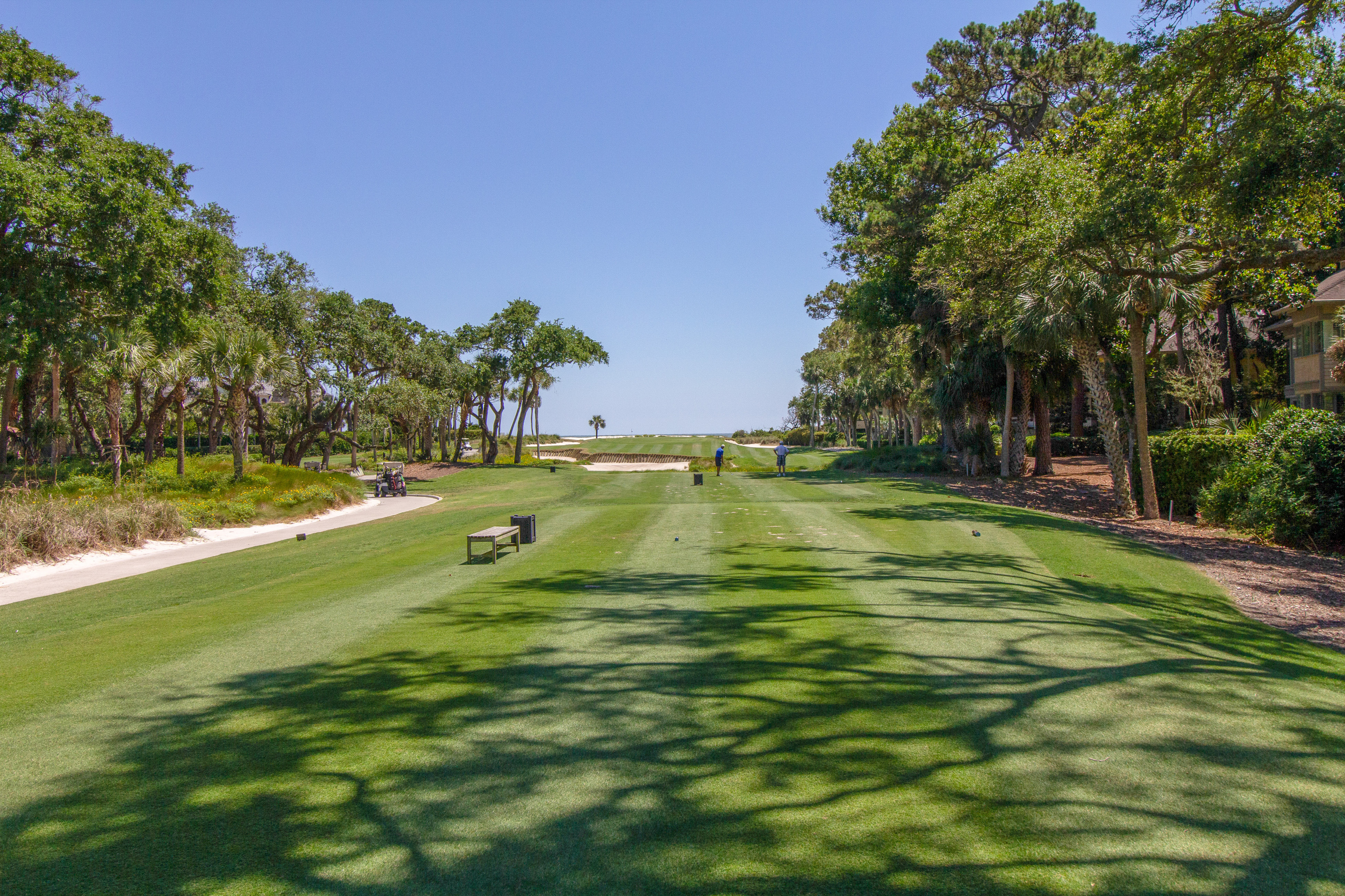 Plantation Club 487 | Photo 36