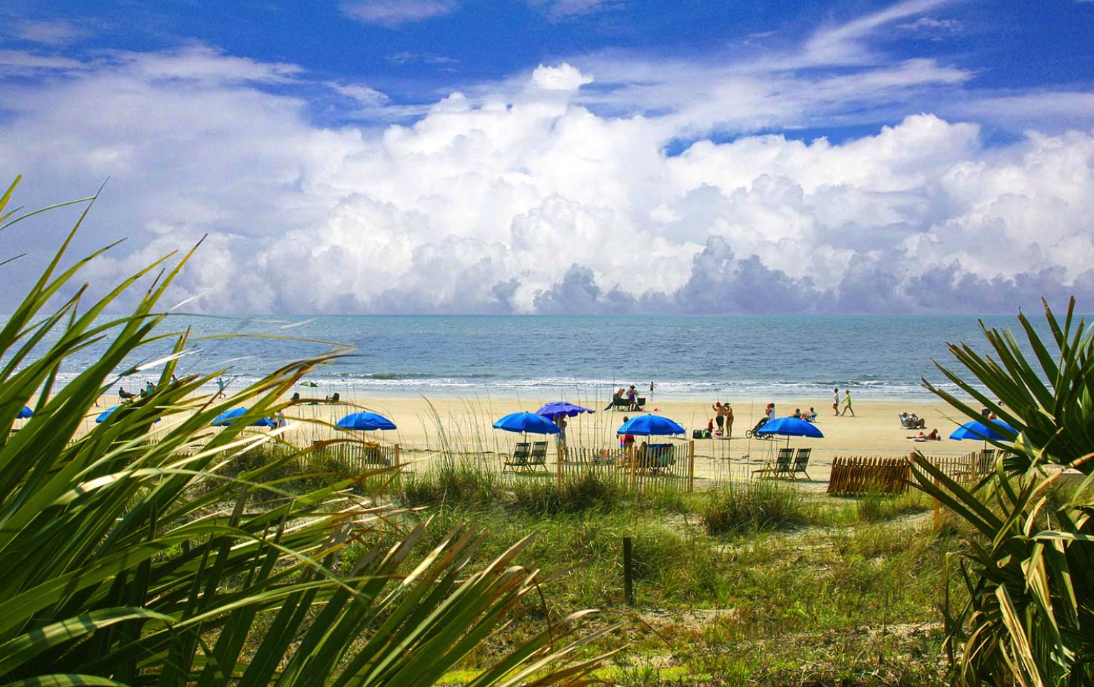 Beachwalk 104   Photo 42