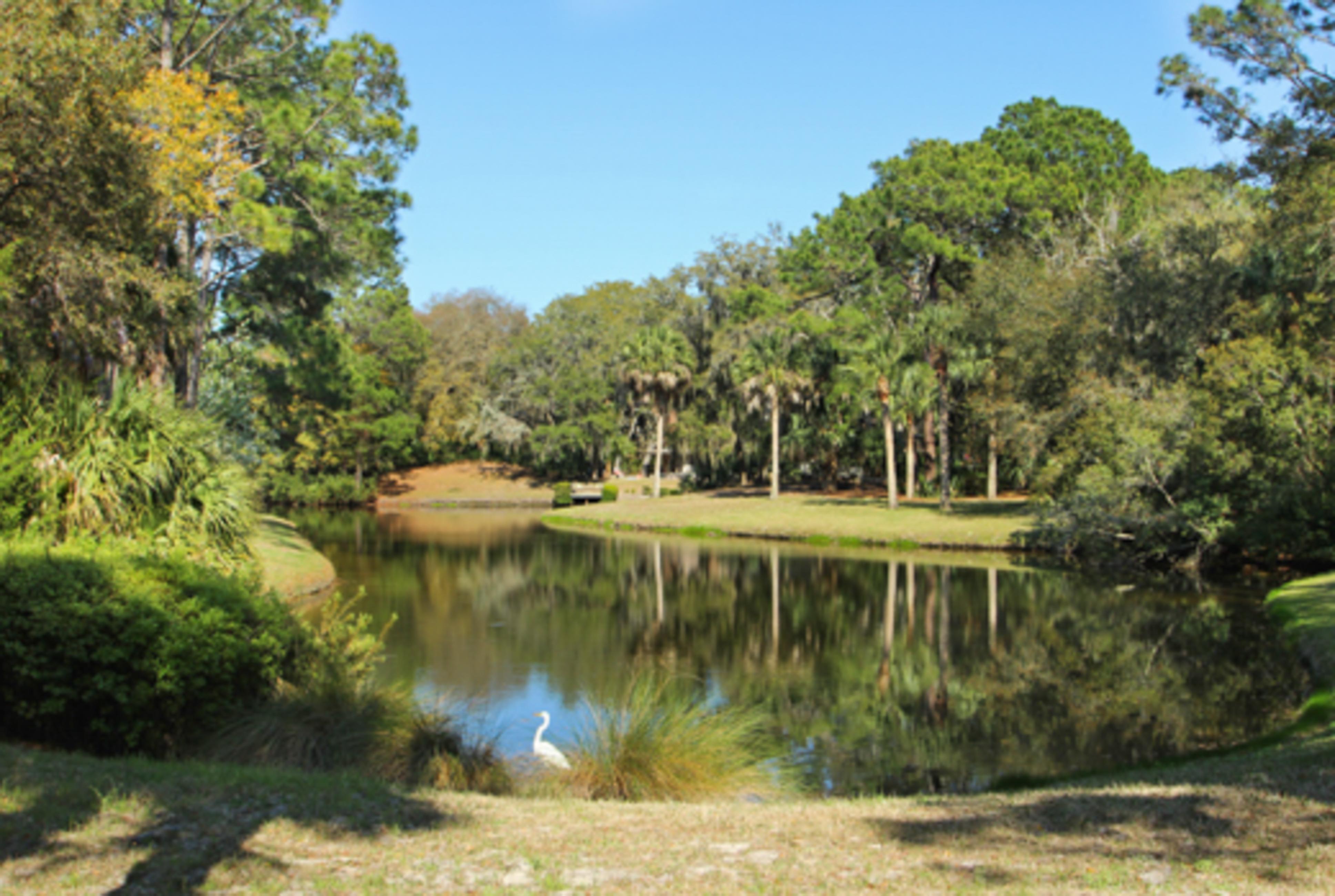 Sprunt Pond | Photo 35
