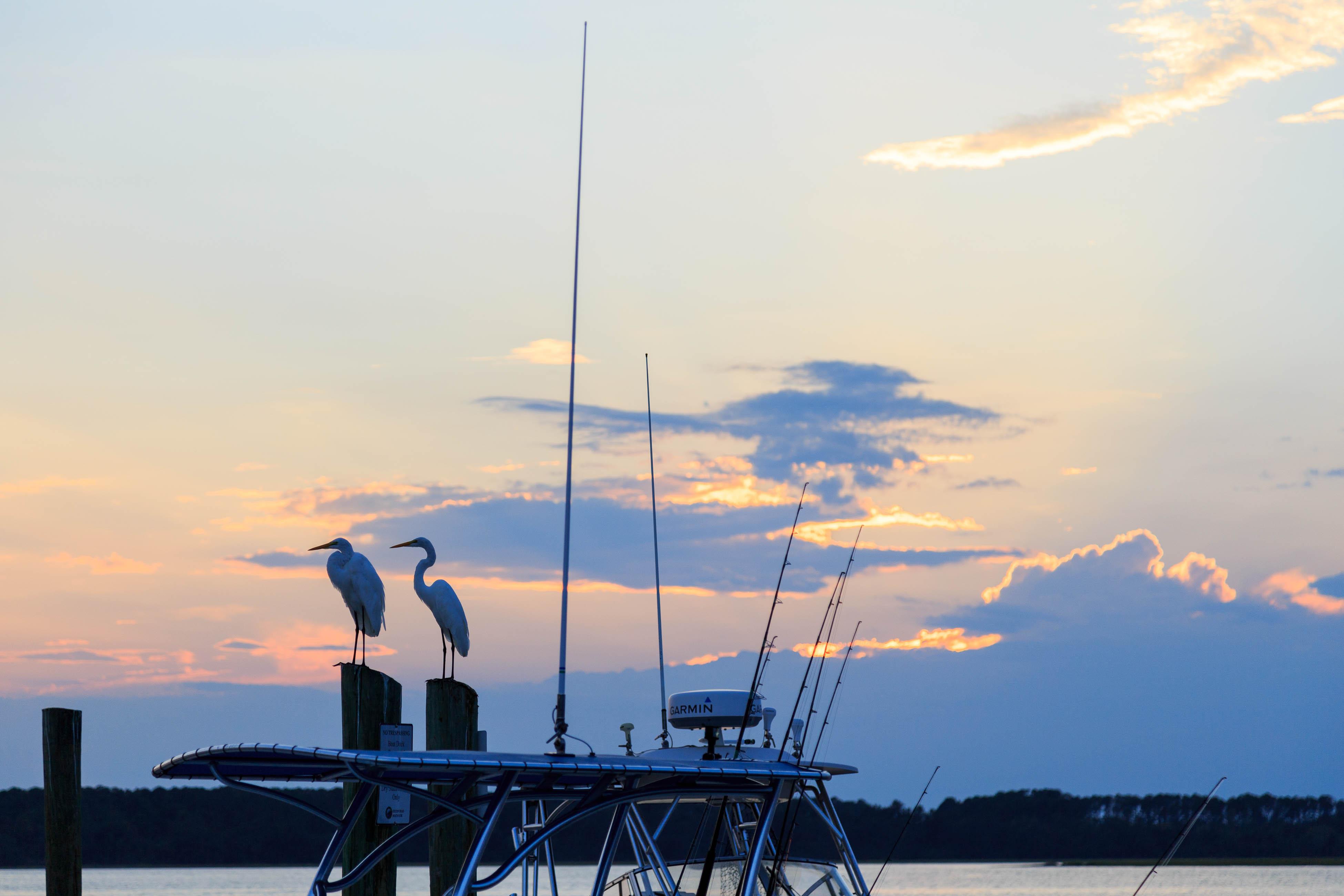 Ocean Breeze 7016 | Photo 29