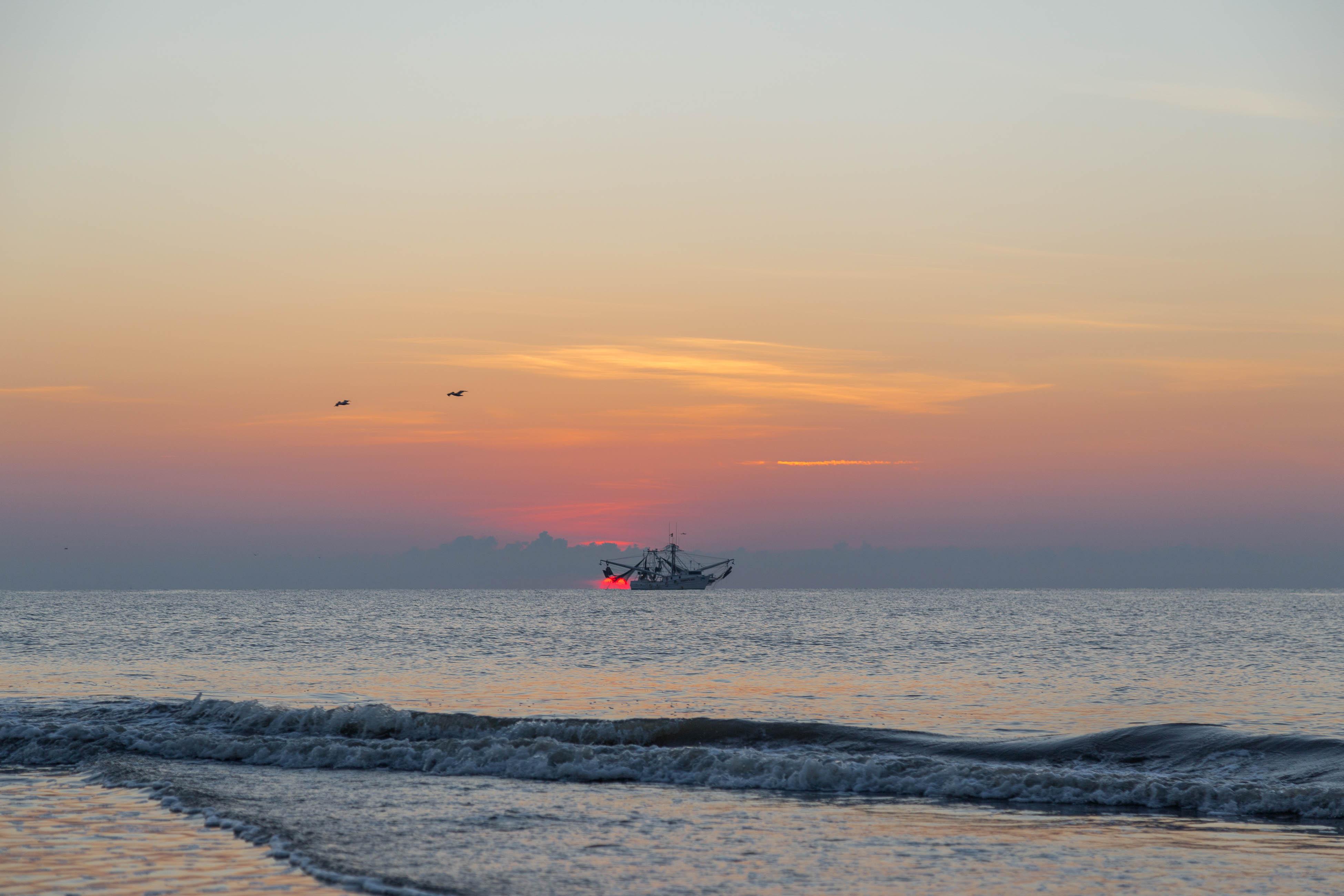 Ocean Dream   Photo 38