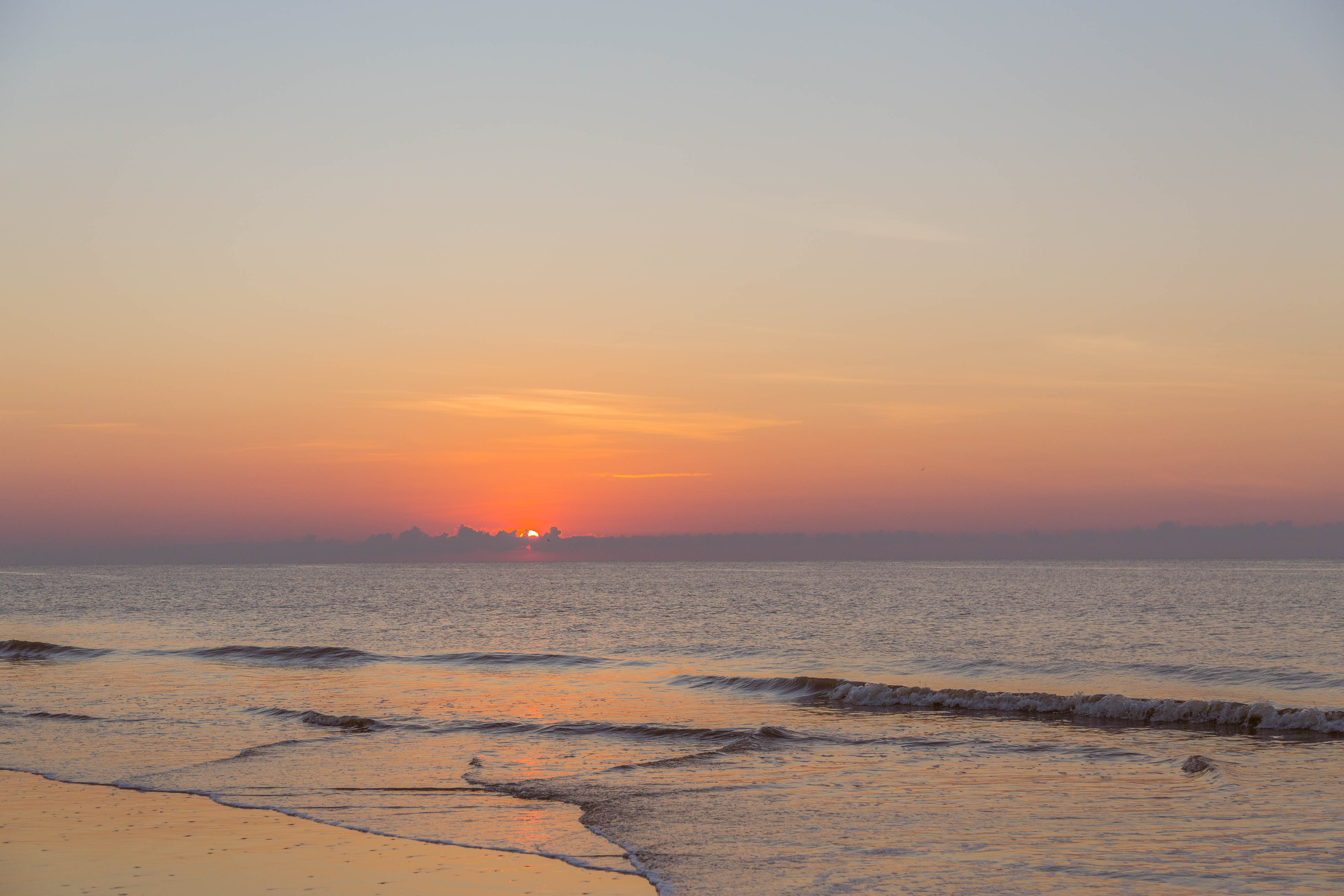 Ocean Dream   Photo 37