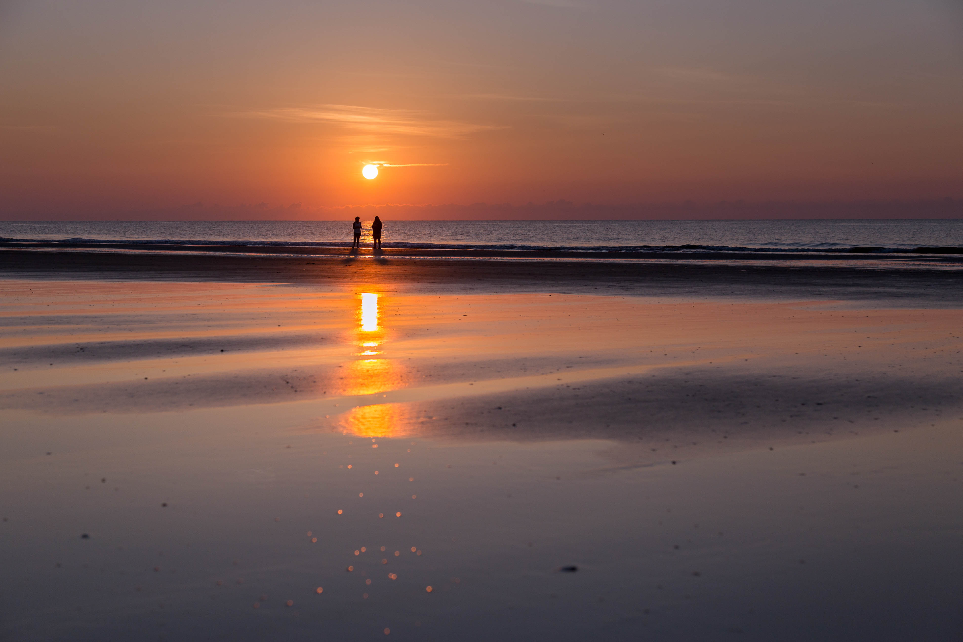 Ocean Dream   Photo 39